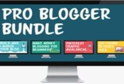 Alex Nerney & Lauren McManus – Pro Blogger Bundle Free Download –