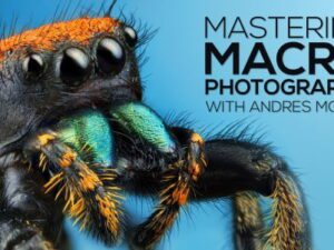 Andres Moline – Fstoppers – Mastering Macro Photography Download